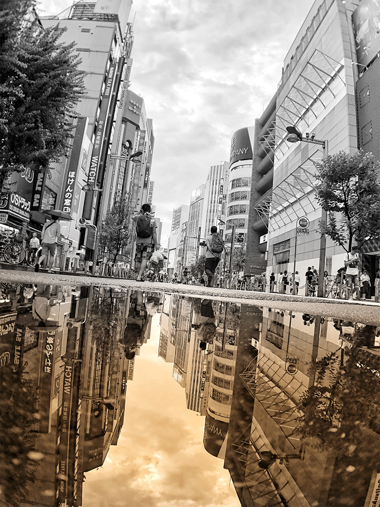 In a mirror and real world / 鏡の中と現実の世界